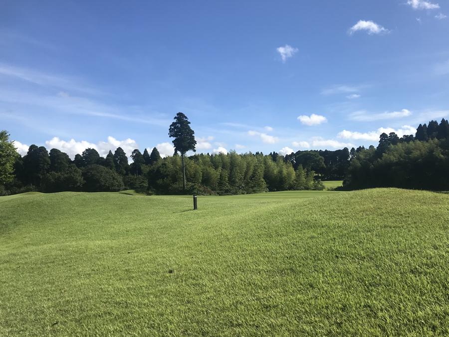 ゴルフ 倶楽部 ヌーヴェル